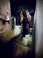 1. Slaughterhouse