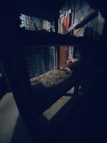 1. Slaughterhouse - Des Moines Haunted Houses