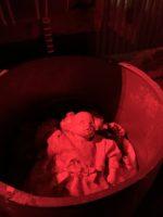 A barrel of babies?